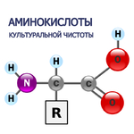 L-аспарагин моногидрат